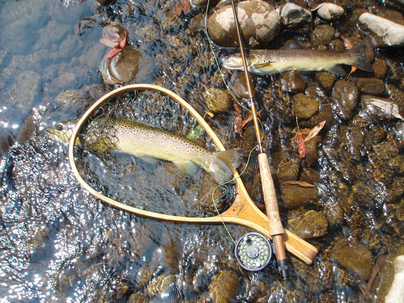 Wilderness streams sometimes give up good fish. One released, one for the table.